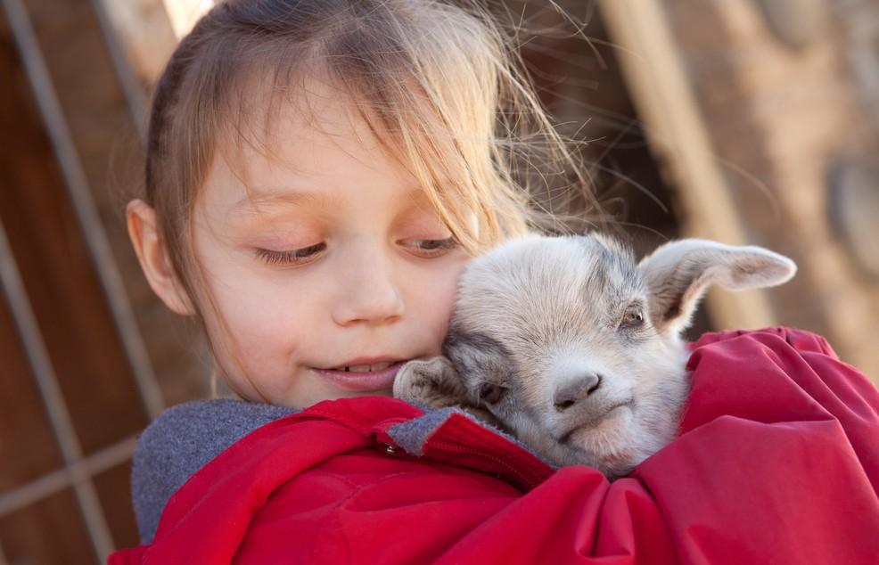 Ein Muss für jede Familienreise: Im Naturpark von Cervia finden Kinder eine Streichelzoo, in dem sie die Tiere auch füttern können. Der Naturpark liegt nur etwas über einen Kilometer von Milano Marittima entfernt. (#2)