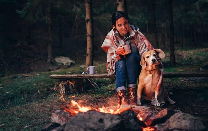 Auch auf dem Campingplatz fühlt sich unser Hund total wohl. (Foto: shutterstock - Soloviova Liudmyla)